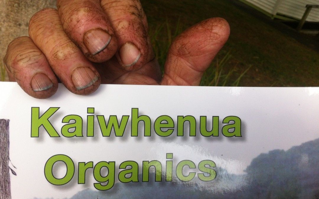 Kaiwhenua goodness is now in print!