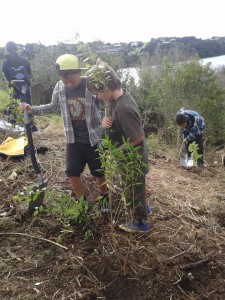 Rumaki-planting